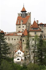 Preview iPhone wallpaper Romania, Bran Castle, trees