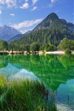 Slovenia, lake, Julian Alps, trees, mountains