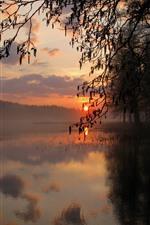 Árvores, silhueta, lago, pôr do sol, nuvens