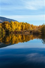 Preview iPhone wallpaper Washington, lake, trees, water reflection, autumn