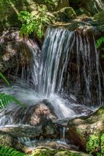 iPhone обои Водопад, ручье, камни, листья папоротника