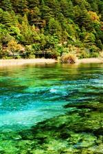 Preview iPhone wallpaper Beautiful Jiuzhaigou nature scenery, lake, grass, trees, China