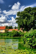 Preview iPhone wallpaper Denmark, Nyborg, trees, duckweed, castle, green, pond