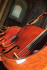 Preview iPhone wallpaper Double bass, music