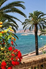 Preview iPhone wallpaper France, Menton, flowers, palm trees, road, coast