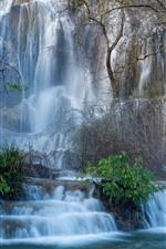 França, cachoeira, árvores, nevoeiro