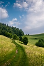 Preview iPhone wallpaper Green fields, trees, hill, clouds