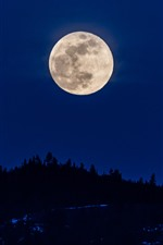 Preview iPhone wallpaper Moon, night, silhouette, sky