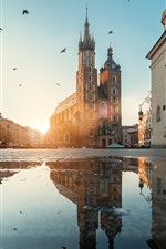 Preview iPhone wallpaper Poland, Krakow, street, puddle, water, birds