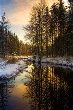 Preview iPhone wallpaper Snow, winter, forest, trees, river, morning