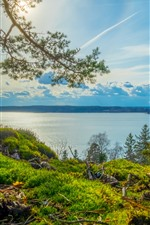 Preview iPhone wallpaper Sweden, Grodinge, river, trees, grass, clouds, sunshine