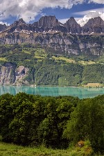 Preview iPhone wallpaper Switzerland, trees, mountains, lake, grass, cow