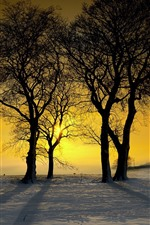 Preview iPhone wallpaper Winter, snow, trees, sunset, silhouette