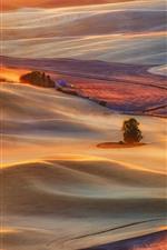 预览iPhone壁纸 美丽的乡村,田野,房屋,树木,丘陵,阳光