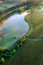 Preview iPhone wallpaper Countryside, fields, green, morning, fog, pond, sun rays