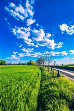 Preview iPhone wallpaper Countryside, green fields, road, blue sky, clouds