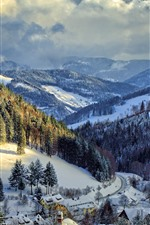 Preview iPhone wallpaper Germany, winter, snow, trees, mountains, village, road