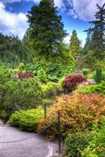 iPhone обои Трава, деревья, цветы, путь, цепь, парк