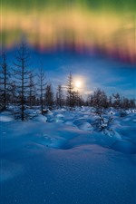 Preview iPhone wallpaper Northern lights, winter, snow, trees, evening, stars