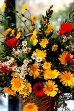 Papoilas vermelhas, margaridas amarelas e brancas, flores, janela