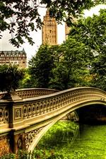 iPhone обои Река, мост, деревья, дома, город, парк