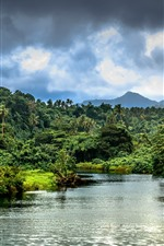 Preview iPhone wallpaper River, palm trees, jungle, bushes, mountains, tropical, Samoa