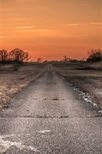 Preview iPhone wallpaper Road, grass, trees, sunset, countryside