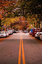 Preview iPhone wallpaper Road, trees, cars, city, autumn, USA