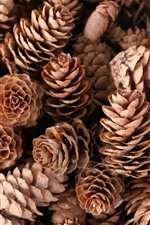 Preview iPhone wallpaper Some pine cones