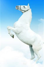 Preview iPhone wallpaper White horse, sky, clouds
