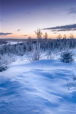 Preview iPhone wallpaper Winter, snow, trees, grass, river, clouds, dusk