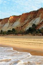 Preview iPhone wallpaper Coast, sea, beach, foam, trees, blue sky