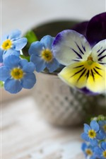 Preview iPhone wallpaper Forget-me-not flowers, blue, hazy