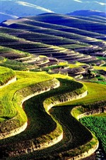 Preview iPhone wallpaper Huining Terraces, countryside, China