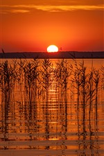 Preview iPhone wallpaper Lake, grass, reed, sunset, red sky, silhouette