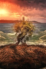 Preview iPhone wallpaper Lonely tree, small island, sea, waves, sunset