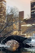 Preview iPhone wallpaper New York, park, snow, bridge, trees, winter, USA