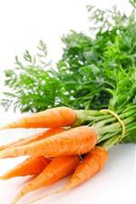 Algumas cenouras, fundo branco