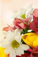 Aperçu iPhone fond d'écranQuelques fleurs, rouge, jaune, blanc, fond brumeux