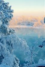 Neve grossa, árvores, lago, inverno