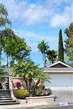 Tropical, árvores, villa, estrada