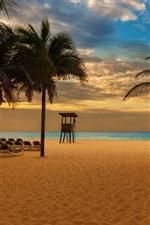 Aperçu iPhone fond d'écranPlage, palmiers, chaises, mer, crépuscule