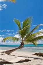 Aperçu iPhone fond d'écranPlage, palmiers, soleil, mer, ciel bleu, tropical