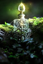 Preview iPhone wallpaper Bottle, shine, web, ivy, Creative picture