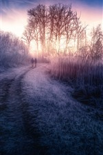 Preview iPhone wallpaper Dawn, grass, trees, road, fog, HDR style