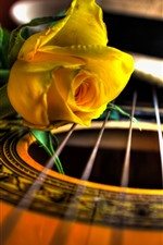 Preview iPhone wallpaper Guitar and yellow rose, macro photography