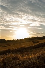 Preview iPhone wallpaper Hay, field, sunset, sky, clouds