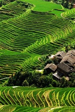 Preview iPhone wallpaper Longji Terraces, green, slope, village, China