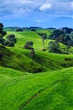 Aperçu iPhone fond d'écranNouvelle-Zélande, montagnes, arbres, prairie verte, mouton