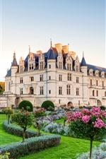 iPhone壁紙のプレビュー 宮殿、城、庭、花、芝生
